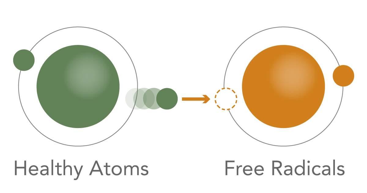 oxidation infographic