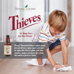 Thieves Cleaner Booklet - 25pk