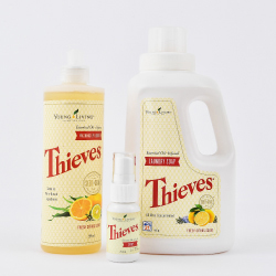 Clean with Thieves Set