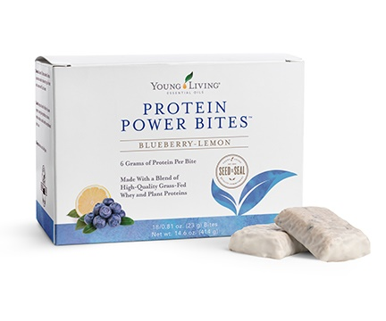 Protein Power Bites