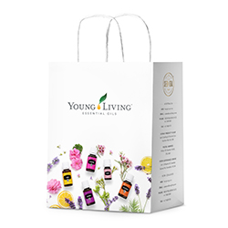 YL Paper Bag - Large - 10pk