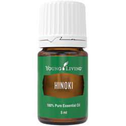 Hinoki Essential Oil