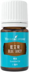 藍艾菊精油