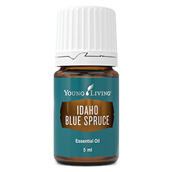 Idaho Blue Spruce Essential Oil 5ml