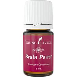 Brain Power - Gedächtniskraft