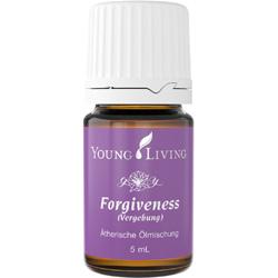 Forgiveness - Vergebung