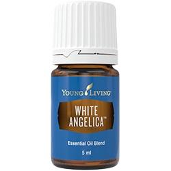 White Angelica - Weißer Engel