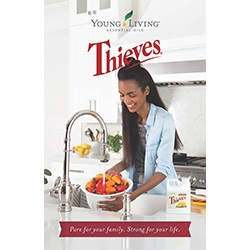 Booklet, Thieves 10pk - English 盗贼小册子 - 英语