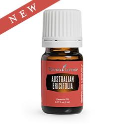 Australian Ericifolia