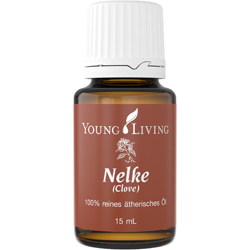 Clove - Nelke