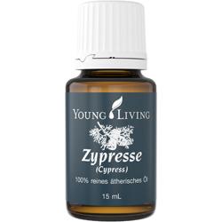 Cypress  - Zypresse
