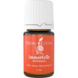 Helichrysum - Immortelle/Strohblume