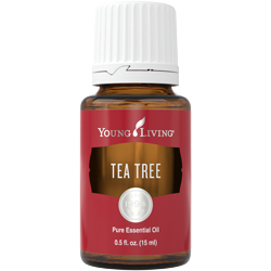 Young Living Tea Tree Essential Oil - 5 ml