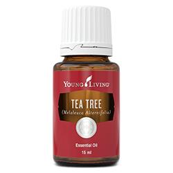 Tea Tree (Melaleuca Alternifolia) Essential Oil