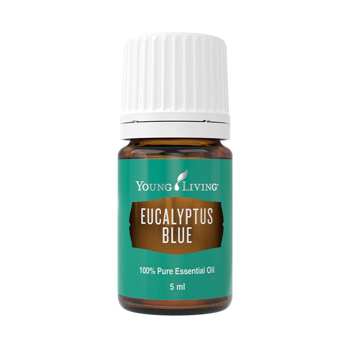 Minyak Pati Eucalyptus Blue