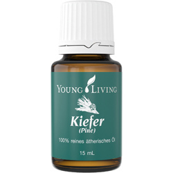 Pine Essential Oil - Kiefer