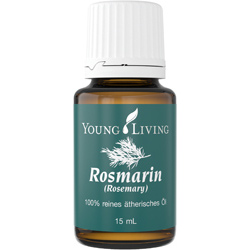 Rosemary - Rosmarin