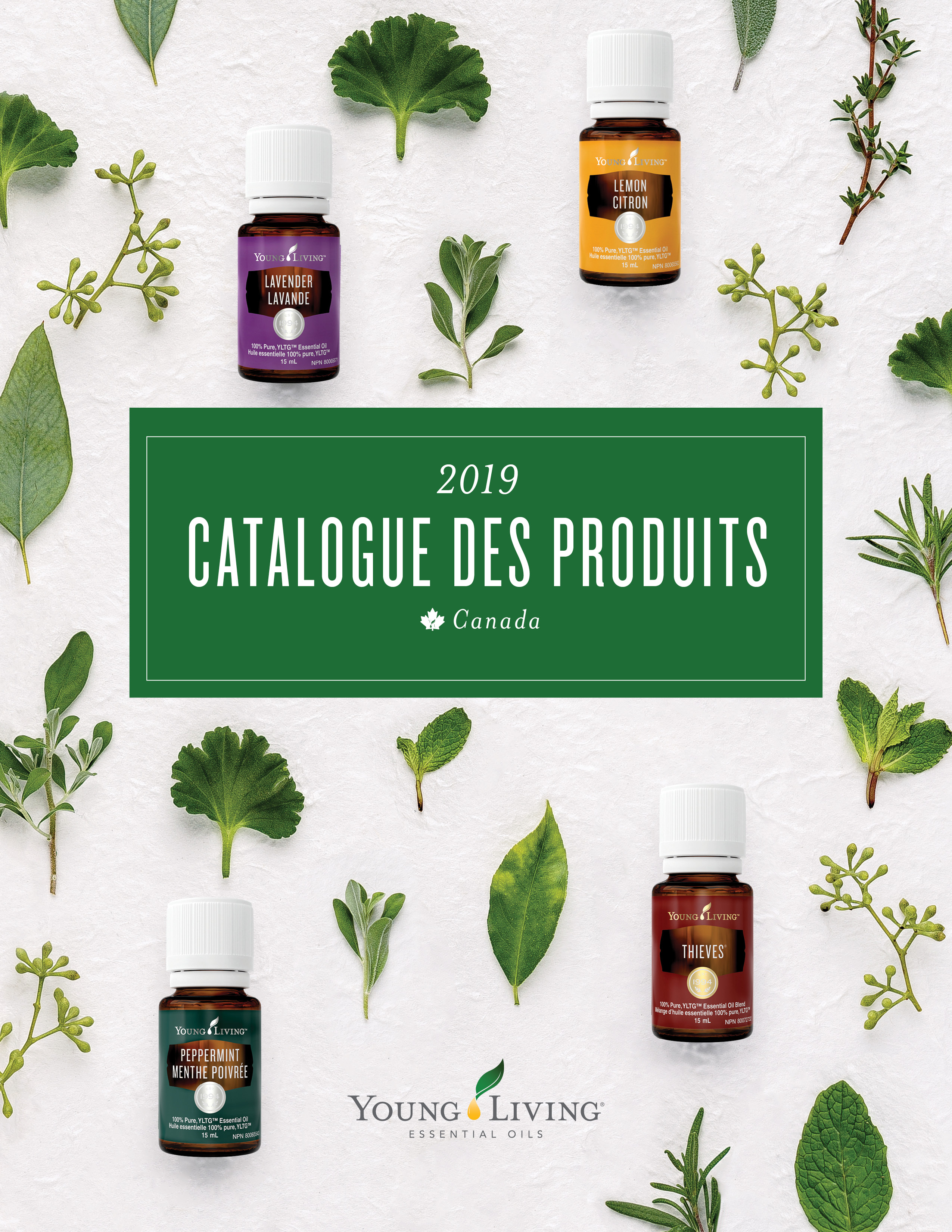 Complimentary French Product Guide – Optional Add-On