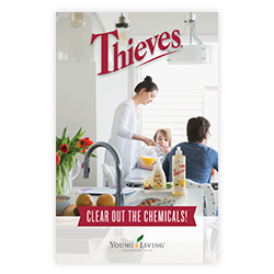 Brochure - Thieves - 10pk
