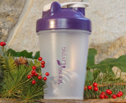 YL Blender Bottle - Purple