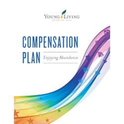 Compensation Plan Trifold Flyer
