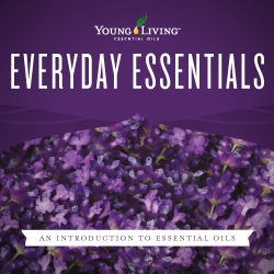 Brochure, Everyday Essentials