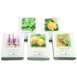 Essential Oil Sample Sachet (assorted)