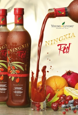 Booklet, Ningxia Red