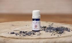 Wild Lavender - 5 ml