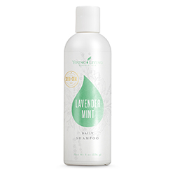 Lavender Mint Daily Shampoo
