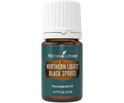 Northern Lights Black Spruce – 5ml
