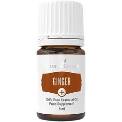 Ginger+