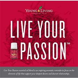 Live Your Passion Brochure - 25 pk