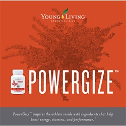 PowerGize Brochure - 25 pk