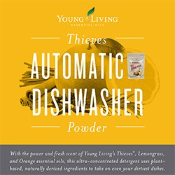 Thieves Automatic Dishwasher Powder Brochure-25pk