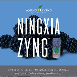 NingXia Zyng Brochure